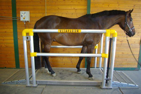 Vitafloor VMC – Horse Vibration Plate