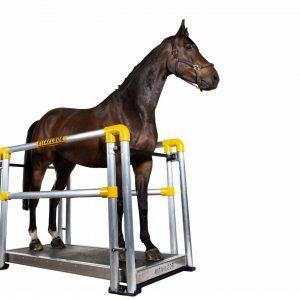 vitafloor horse vibration plate