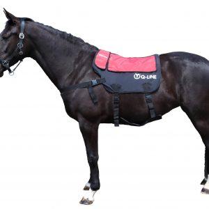 Q-Line Horse Massage Roller