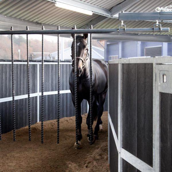 Horse using hot walker