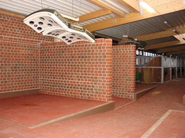 solarium installation in horse stable