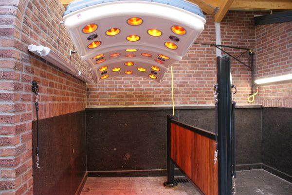 horse solarium installation
