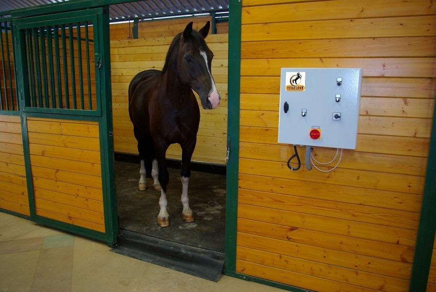 Vibration Horses Platform