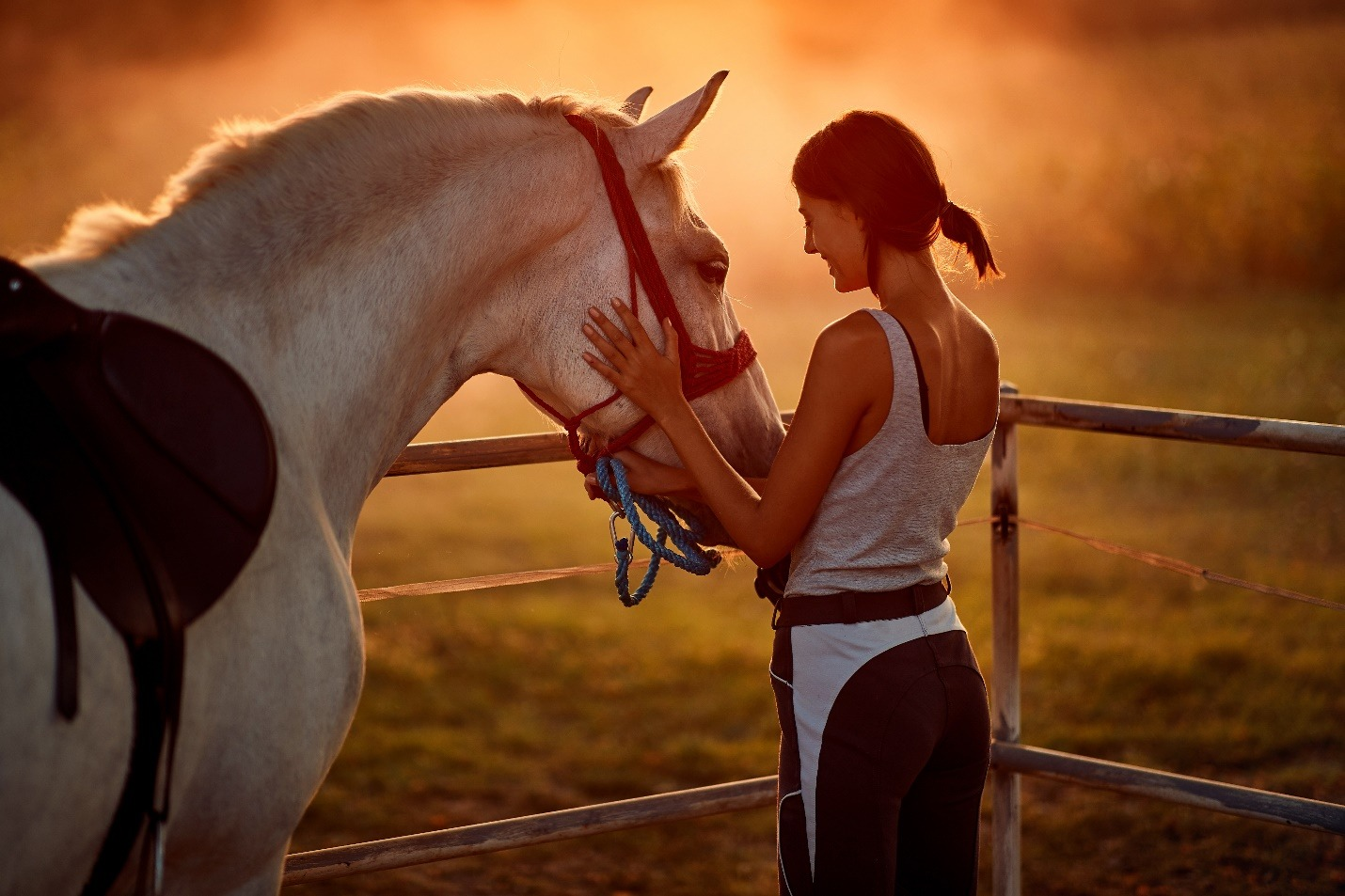 Smiling woman and her horse on a sunset.