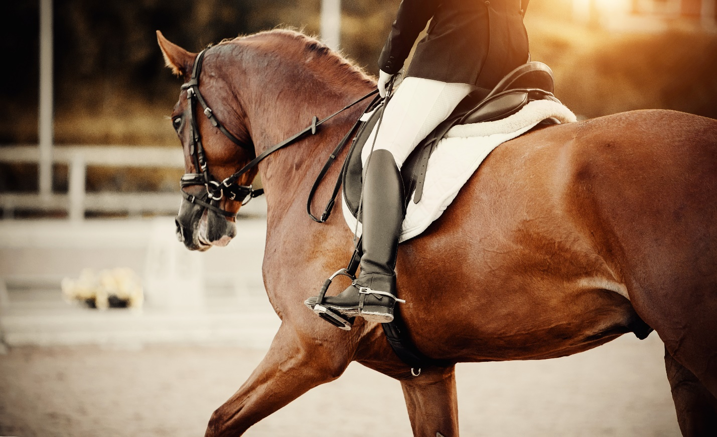 The leg of the rider in the stirrup, riding on a brown horse.