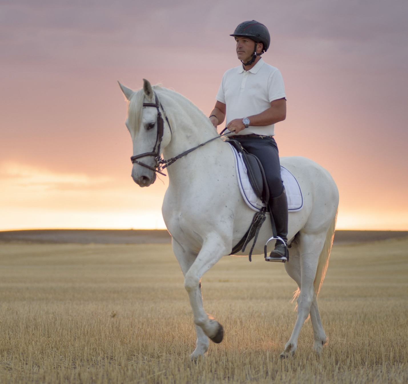 man riding a horse in the field