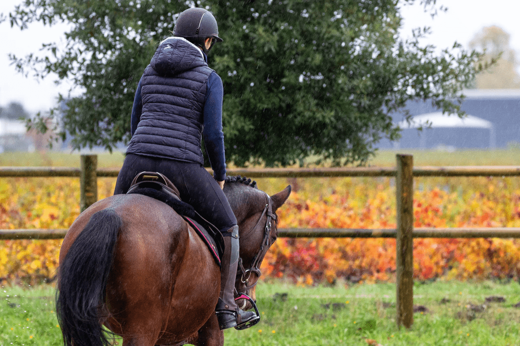 woman in black jacket riding brown horse