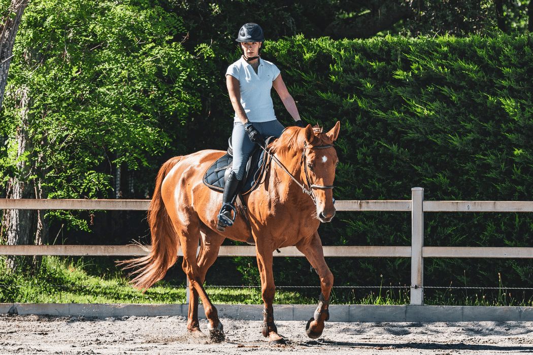 woman in white t-shirt riding brown horse