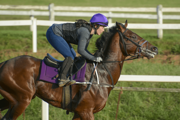 woman riding brown horse during daytime