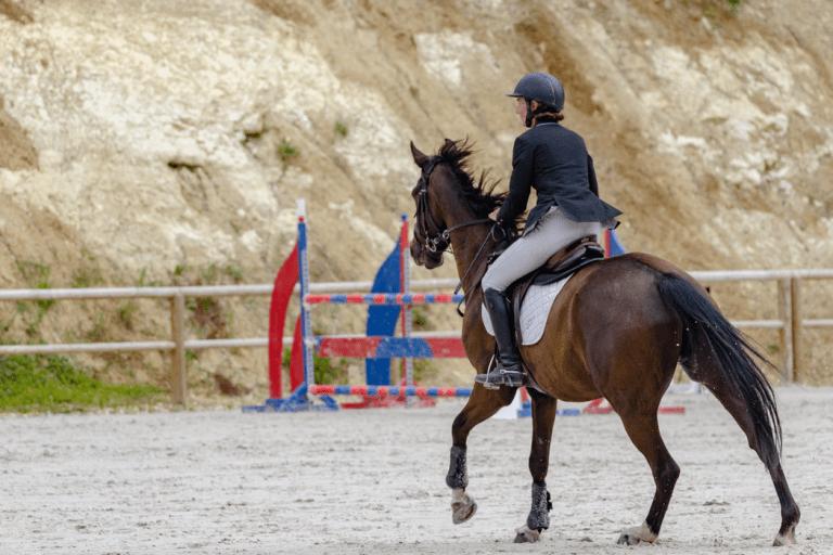 Jumping horse legs walking on dirt ground